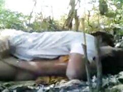 リー-ペトラ 女性 向け 無料 アダルト 動画